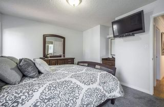Photo 17: 10712 BEARSPAW Drive E in Edmonton: Zone 16 House for sale : MLS®# E4151355