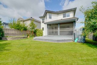 Photo 11: 11805 10A Ave in Edmonton: Zone 16 House for sale : MLS®# E4169613