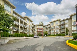 Photo 1: C214 20211 66 Avenue in Langley: Willoughby Heights Condo for sale : MLS®# R2498961