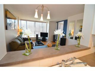 Photo 4: # 207 288 E 8TH AV in Vancouver: Mount Pleasant VE Condo for sale (Vancouver East)  : MLS®# V1030054