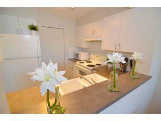 Photo 3: # 207 288 E 8TH AV in Vancouver: Mount Pleasant VE Condo for sale (Vancouver East)  : MLS®# V1030054
