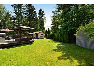 "Photo 31: 20812 43 Avenue in Langley: Brookswood Langley House for sale in ""Cedar Ridge"" : MLS®# F1413457"