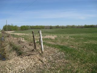 Main Photo: RGE RD 55 & 1/4 mile N of Sec 633: Rural Lac Ste. Anne County Rural Land/Vacant Lot for sale : MLS®# E3408769