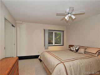 Photo 12: 101 1235 Johnson St in VICTORIA: Vi Downtown Condo Apartment for sale (Victoria)  : MLS®# 716841