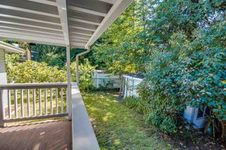 Photo 15: 20208 116B Avenue in Maple Ridge: Southwest Maple Ridge House for sale : MLS®# R2116409