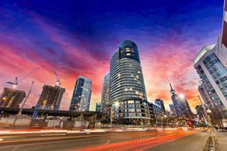 Photo 16: 316 38 Dan Leckie Way in Toronto: Waterfront Communities C1 Condo for sale (Toronto C01)  : MLS®# C3699709