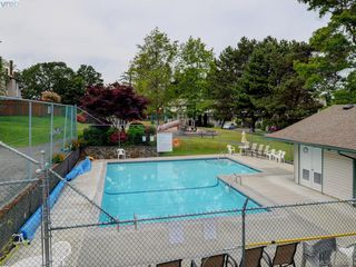 Photo 16: 301 642 Agnes Street in VICTORIA: SW Glanford Townhouse for sale (Saanich West)  : MLS®# 379281