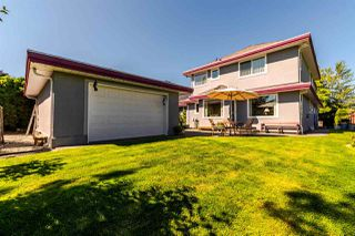 "Photo 19: 4682 218A Street in Langley: Murrayville House for sale in ""Murrayville"" : MLS®# R2192414"