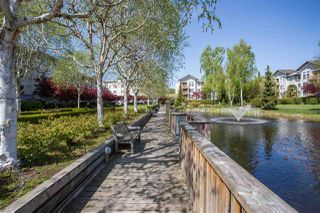"Photo 15: 102 5600 ANDREWS Road in Richmond: Steveston South Condo for sale in ""LAGOONS"" : MLS®# R2261531"
