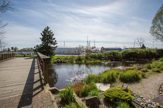 "Photo 13: 102 5600 ANDREWS Road in Richmond: Steveston South Condo for sale in ""LAGOONS"" : MLS®# R2261531"