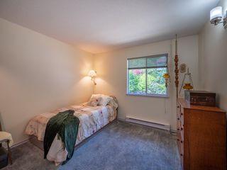 Photo 9:  in Sechelt: Sechelt District House for sale (Sunshine Coast)  : MLS®# R2272815