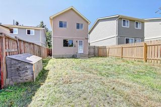Photo 35: 16 ERIN CROFT Green SE in Calgary: Erin Woods Detached for sale : MLS®# C4193152
