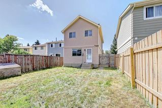 Photo 36: 16 ERIN CROFT Green SE in Calgary: Erin Woods Detached for sale : MLS®# C4193152