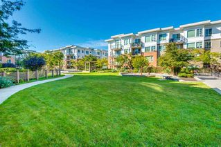 "Photo 14: 333 9500 ODLIN Road in Richmond: West Cambie Condo for sale in ""Cambridge Park"" : MLS®# R2306612"