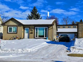 Main Photo: 1007 38 Street in Edmonton: Zone 29 House for sale : MLS®# E4138784