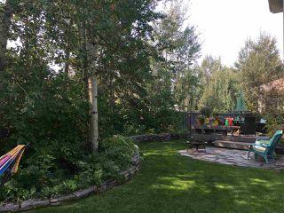 Main Photo: 4704 209 Street in Edmonton: Zone 58 House for sale : MLS®# E4143769