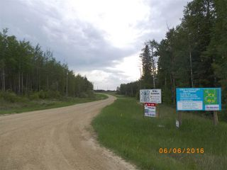 Photo 7: Twp 54 RR15: Rural Lac Ste. Anne County Rural Land/Vacant Lot for sale : MLS®# E4145798