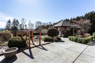 "Photo 18: 21584 78 Avenue in Langley: Willoughby Heights House for sale in ""Willoughby"" : MLS®# R2352857"