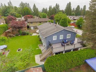 Photo 17: 11762 212 Street in Maple Ridge: Southwest Maple Ridge House for sale : MLS®# R2366707