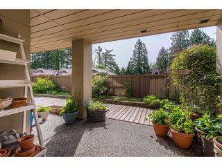 """Photo 20: 12 2058 WINFIELD Drive in Abbotsford: Abbotsford East Townhouse for sale in """"Rosehill Estates"""" : MLS®# R2369380"""