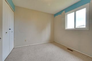 Photo 13: 4110 28 Avenue in Edmonton: Zone 29 House for sale : MLS®# E4161251