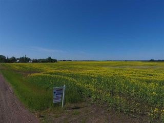 Main Photo: 54024 - RR 264: Rural Sturgeon County Rural Land/Vacant Lot for sale : MLS®# E4183392