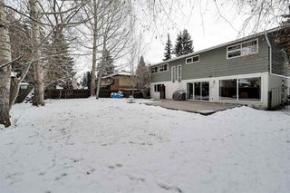 Photo 45: 192 QUESNELL Crescent in Edmonton: Zone 22 House for sale : MLS®# E4183631