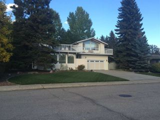 Photo 48: 192 QUESNELL Crescent in Edmonton: Zone 22 House for sale : MLS®# E4183631
