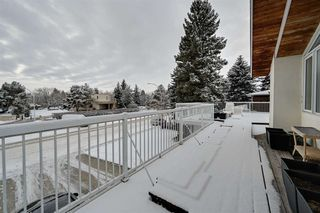 Photo 35: 192 QUESNELL Crescent in Edmonton: Zone 22 House for sale : MLS®# E4183631