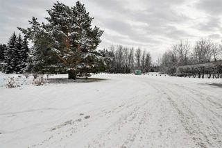 Photo 36: 192 QUESNELL Crescent in Edmonton: Zone 22 House for sale : MLS®# E4183631