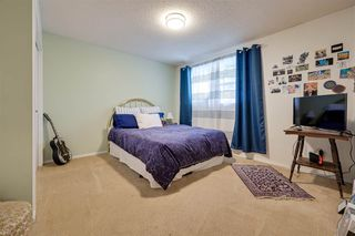 Photo 25: 192 QUESNELL Crescent in Edmonton: Zone 22 House for sale : MLS®# E4183631