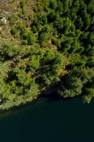 Photo 14: A&B DL 4430 SECHELT INLET in Egmont: Pender Harbour Egmont Land for sale (Sunshine Coast)  : MLS®# R2454150