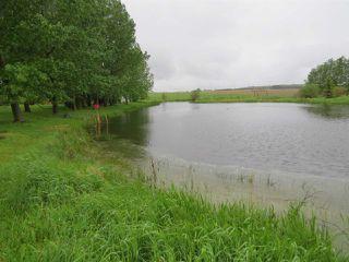 Photo 13: 55116 Range Road 230: Fort Saskatchewan House for sale : MLS®# E4201203