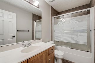Photo 27: 59 Saddlecrest Terrace in Calgary: Saddle Ridge Detached for sale : MLS®# A1043132