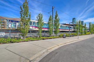 Photo 49: 59 Saddlecrest Terrace in Calgary: Saddle Ridge Detached for sale : MLS®# A1043132