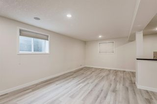 Photo 39: 59 Saddlecrest Terrace in Calgary: Saddle Ridge Detached for sale : MLS®# A1043132