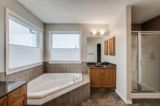 Photo 32: 59 Saddlecrest Terrace in Calgary: Saddle Ridge Detached for sale : MLS®# A1043132