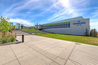 Photo 50: 59 Saddlecrest Terrace in Calgary: Saddle Ridge Detached for sale : MLS®# A1043132