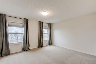 Photo 29: 59 Saddlecrest Terrace in Calgary: Saddle Ridge Detached for sale : MLS®# A1043132