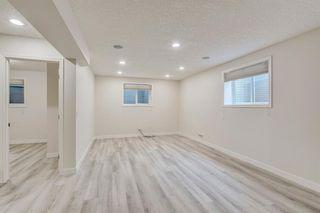 Photo 40: 59 Saddlecrest Terrace in Calgary: Saddle Ridge Detached for sale : MLS®# A1043132