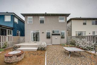 Photo 45: 59 Saddlecrest Terrace in Calgary: Saddle Ridge Detached for sale : MLS®# A1043132