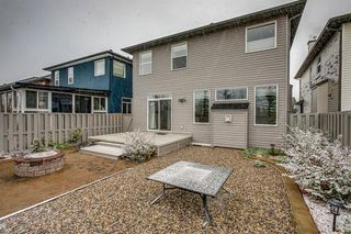 Photo 47: 59 Saddlecrest Terrace in Calgary: Saddle Ridge Detached for sale : MLS®# A1043132