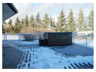 Photo 19: Range Road 4.4 & TWP Road 32.4 in SUNDRE: Rural Mountain View County Residential Detached Single Family for sale : MLS®# C3502695