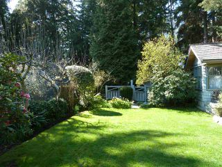 Photo 5: 1295 SINCLAIR Street in West Vancouver: Ambleside House for sale : MLS®# R2054349