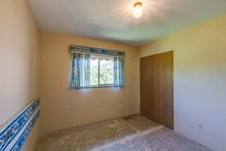 Photo 16: 19558 116B Ave Pitt Meadows MLS 2100320 3 Bedroom 3 Level Split