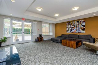 "Photo 16: 213 20460 DOUGLAS Crescent in Langley: Langley City Condo for sale in ""Serenade"" : MLS®# R2115317"