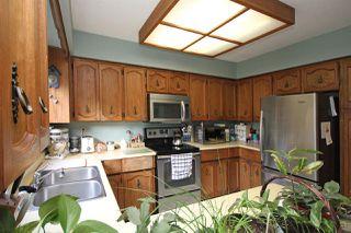 Photo 5: 10611 GAUNT Court in Richmond: Steveston North House for sale : MLS®# R2140052