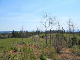 Photo 2: 3 lots Highway 331 in Dublin Shore: 405-Lunenburg County Vacant Land for sale (South Shore)  : MLS®# 201712817