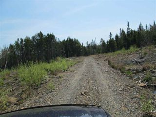 Photo 5: 3 lots Highway 331 in Dublin Shore: 405-Lunenburg County Vacant Land for sale (South Shore)  : MLS®# 201712817