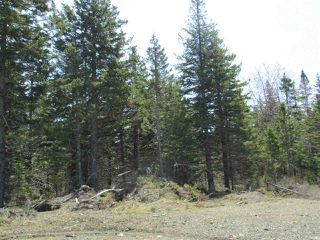 Photo 13: 3 lots Highway 331 in Dublin Shore: 405-Lunenburg County Vacant Land for sale (South Shore)  : MLS®# 201712817